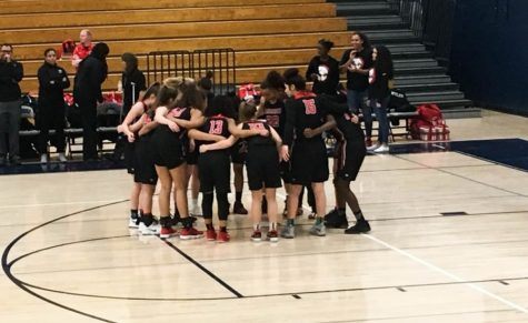 Lady Raptors Fight to the End in 5A Playoffs