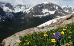 My Top 5 Best Hikes in Colorado