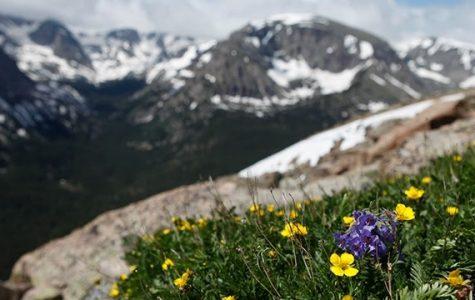 My Top 5 Best Hikes in Colorado