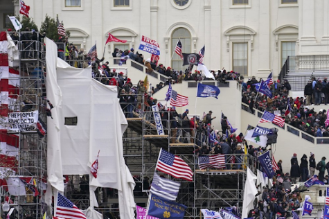 A crowd gathers outside the capitol building, carrying flags supporting Trump and Blue Lives Matter. (AP Photo:John Minchillo)